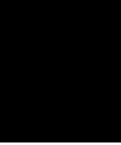 フローリングサイズ図